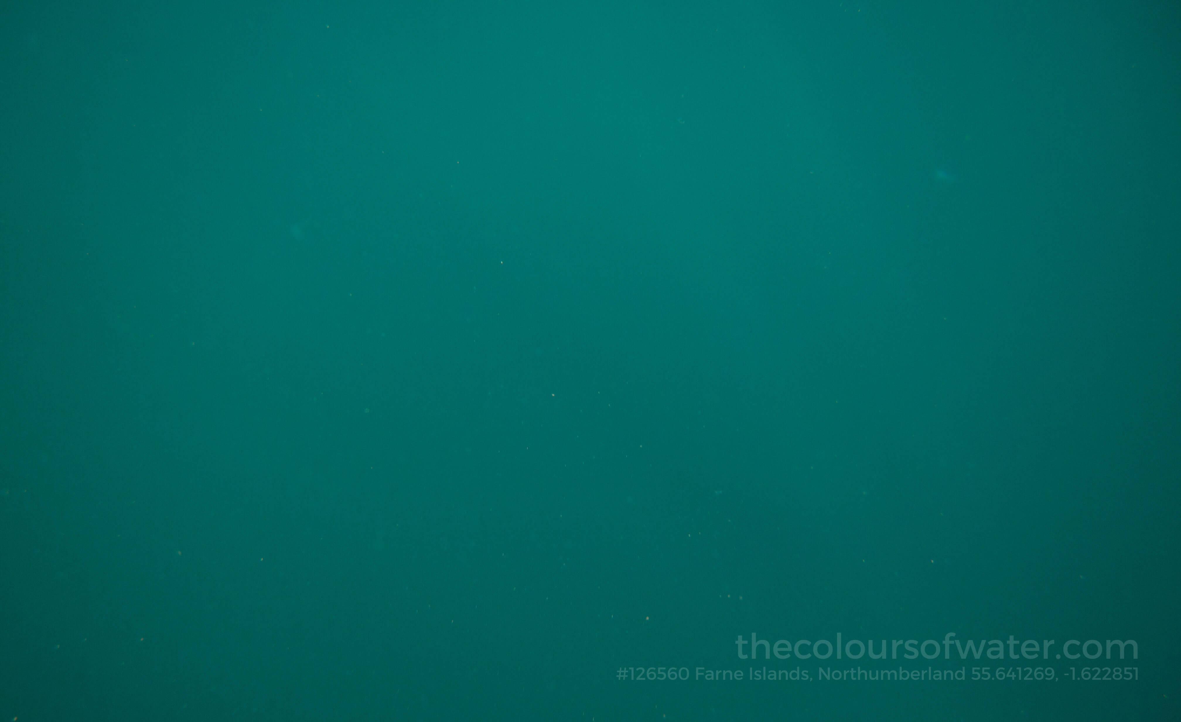Farne Islands, Northumberland North Sea Water #126560