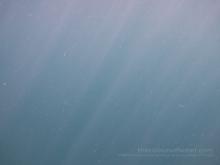 Capernwray Freshwater Diving Quarry, Lancashire, England #768DA0